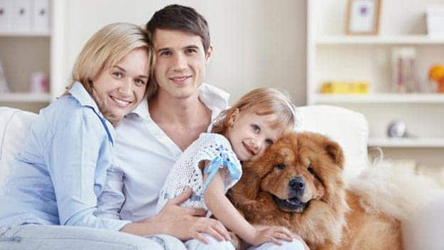Wills & Trusts dog-young-family Direct Wills Higham Ferrers